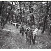 n029-004-1966-tabor-sikfokut.jpg