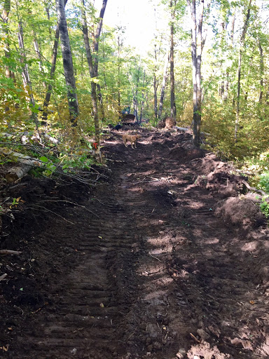 New trail work at the start of Roy's Run. Option for steep hill bypass in beginning. Both options will be groomed.