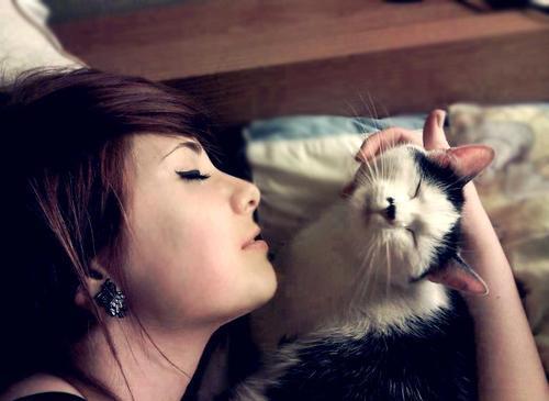 Kucing dan Perempuan