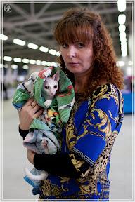 cats-show-24-03-2012-fife-spb-www.coonplanet.ru-025.jpg