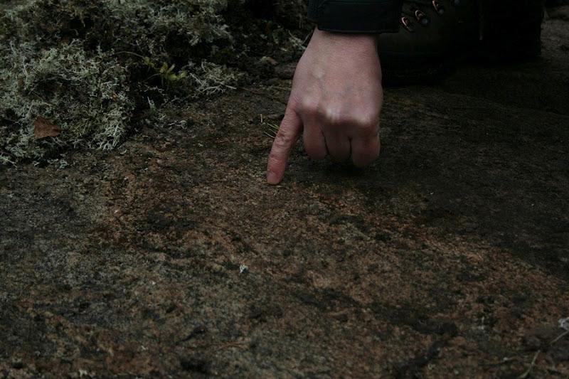 Kallioperägeologian kenttäkurssi, kevät 2012 - Kallioper%25C3%25A4kenttis%2B050.JPG