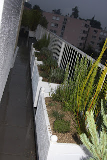 Aménagement de jardiniere sur une terrasse d'imeuble