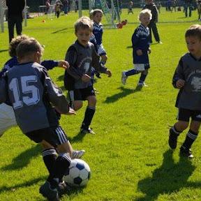 27.09.2008 G-Jugend: Turnier in Differten