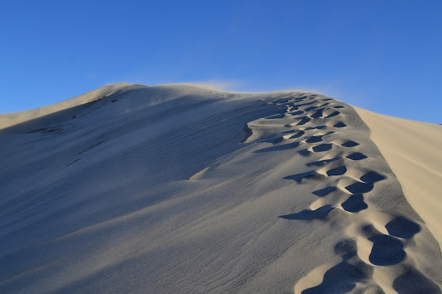 footprints in the sand along a ridge line