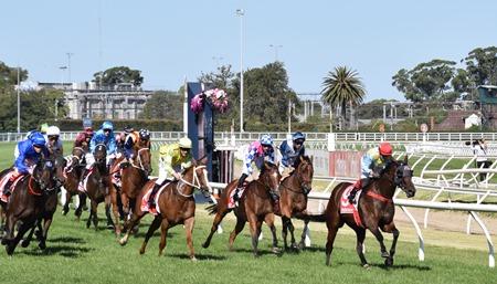 race 8_oakleigh plate_finish 4