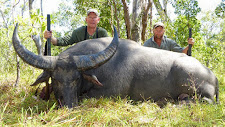 Another great old buffalo bull taken by US hunter, Mr Aaron Finch. 100 SCI points. Good bases and good length.