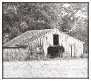 Old Farm Securities Barn