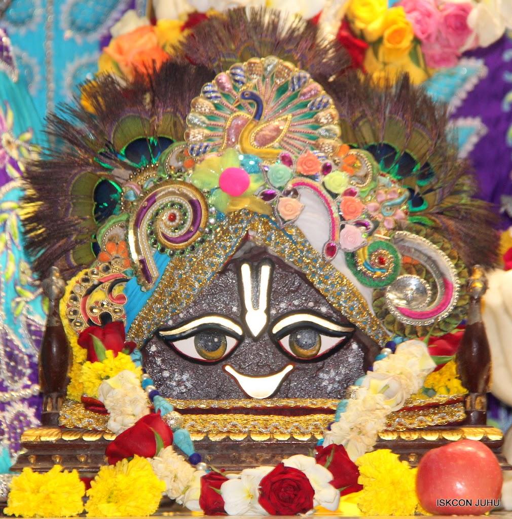 ISKCON Juhu Sringar Deity Darshan on 7th July 2016 (9)