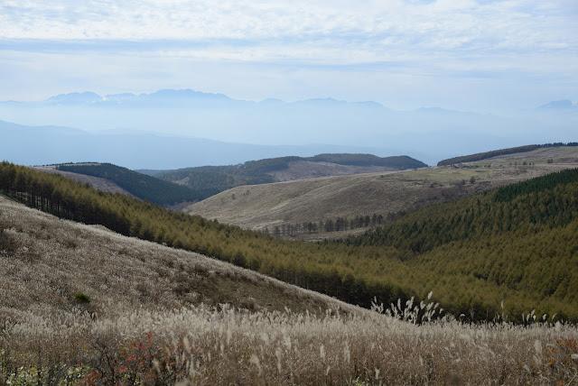 車山高原 nikond610 ビーナスライン
