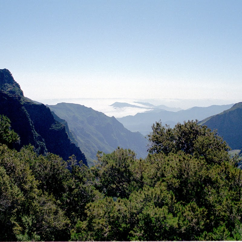 Madeira_40 Pico Ruivo Walk.jpg