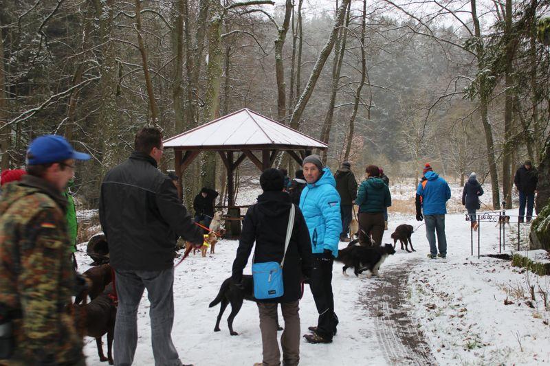01. Januar 2016: Neujahrswanderung ins Waldnaabtal - IMG_1502.JPG
