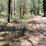 Pearl Beach / Patonga fire trail sign (219659)