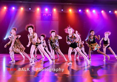 Han Balk Voorster Dansdag 2016-3651-2.jpg