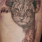 baby lion - tattoo meanings