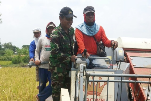 Kelompok tani desa banjarsari kecamatan padas ngawi