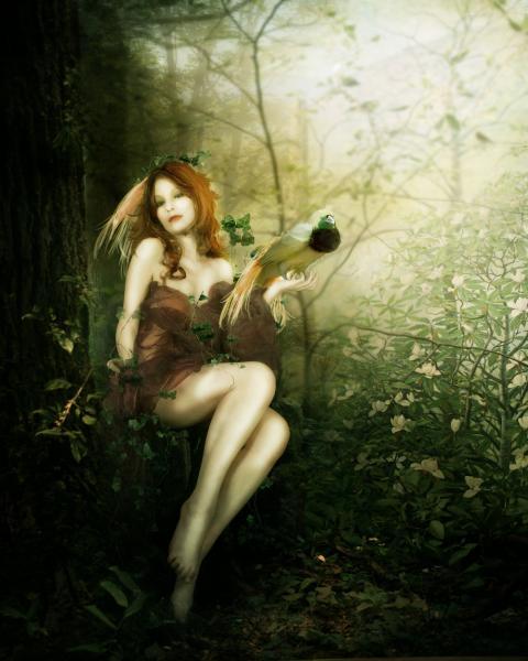 Bird Of Paradise By Inertiak, Green Witches