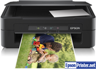 How to reset Epson XP102 printer