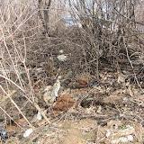 4. Вековой мусор за сторожкой ГСК 112
