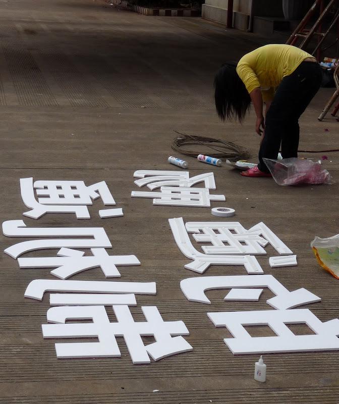 Chine.Yunnan Wen shan et BA MEI 1 - P1260758.JPG