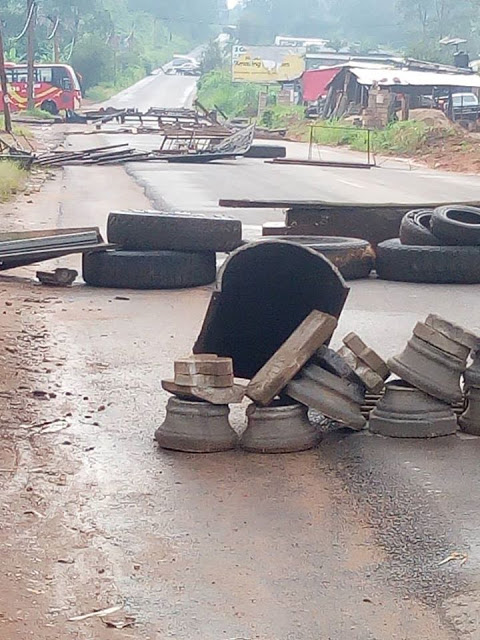 Anglophone crisis: When liberators become oppressors