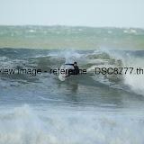 _DSC8777.thumb.jpg