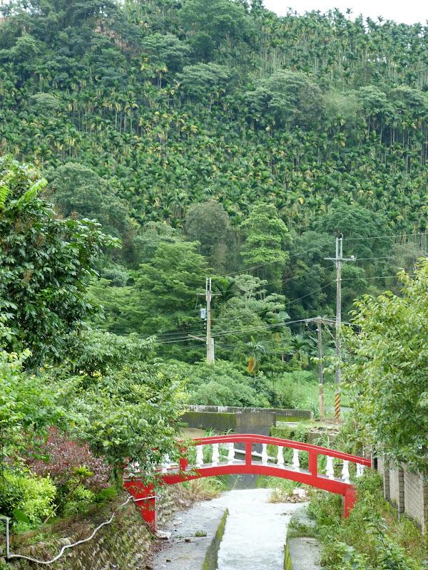 PULI . De Puli a Sun Moon Lake et un village Thao .J 6 - P1150739.JPG