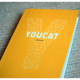 YouCat_Análisis