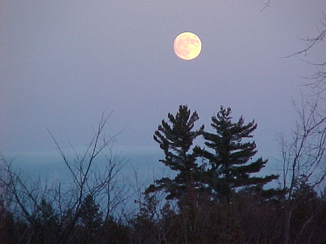 Maple Sugar Moon (Tim Dyson)