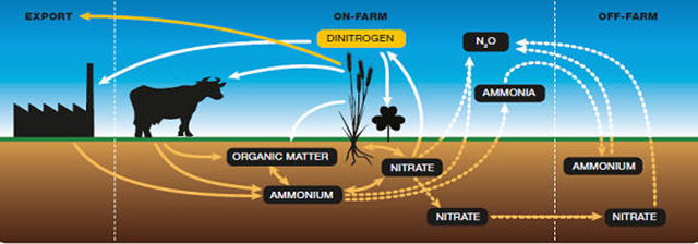 Conceptual View of the Nitrogen Cycle on Canadian Farms. Graphic: Agriculture and Agri-Food Canada