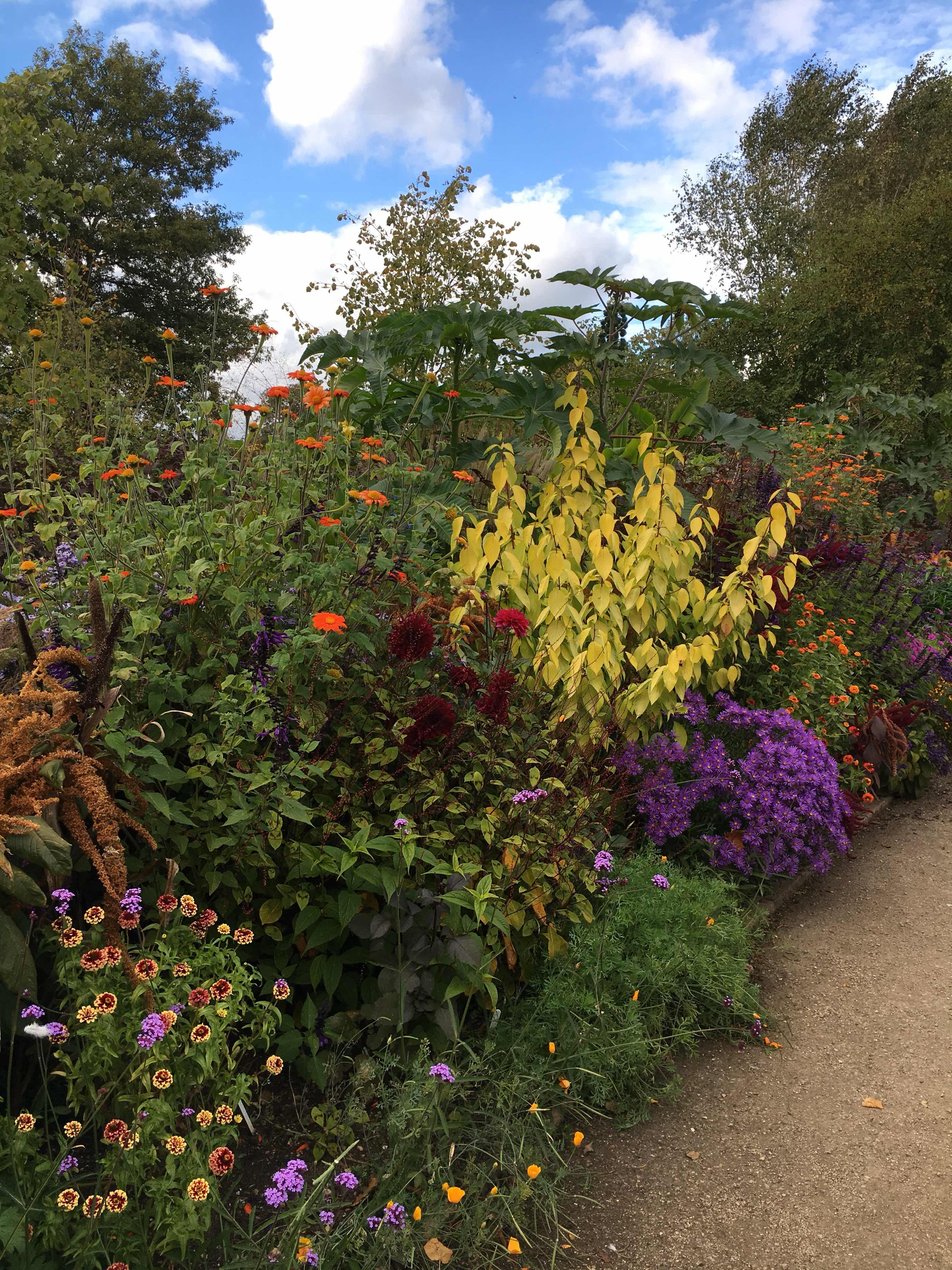 Oxford Botanic Garden