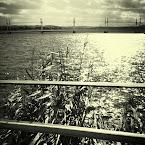 20120916-01-bauers-brygga-bw.jpg