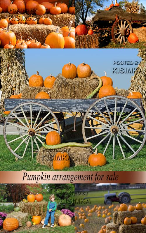 Stock Photo: Pumpkin arrangement for sale