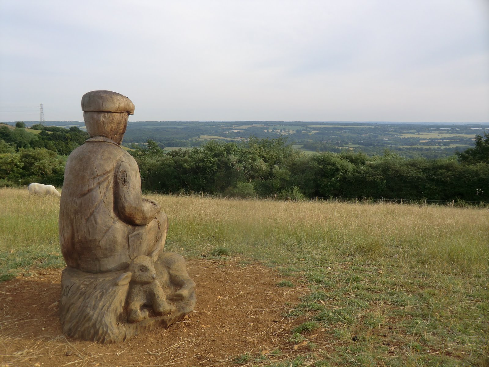 CIMG2464 The Shepherd admires the view