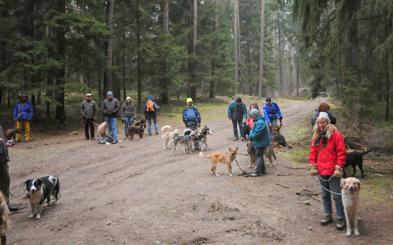 20140101 Neujahrsspaziergang im Waldnaabtal - DSC_9800.JPG