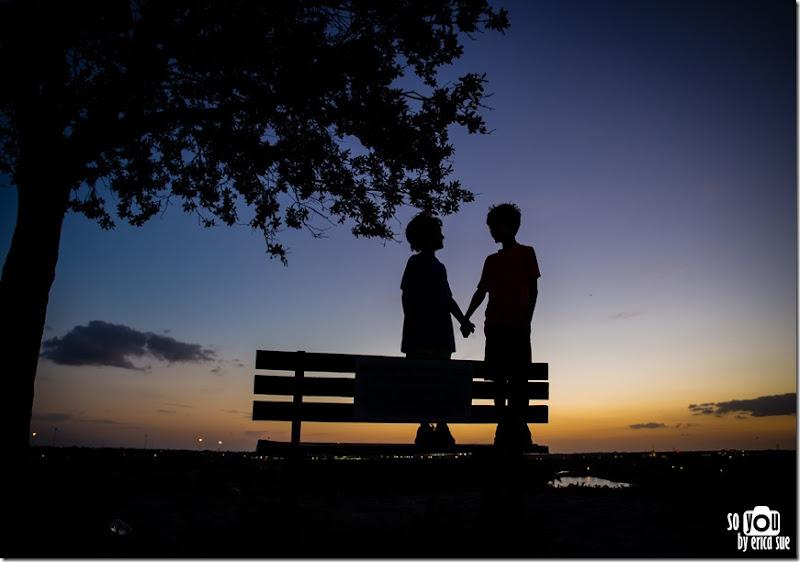 Kite Sunset silhouette-8718