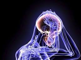 brainology connection of neurons