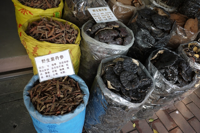 mushrooms and herbs for traditional Chinese medicines