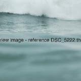 DSC_5222.thumb.jpg