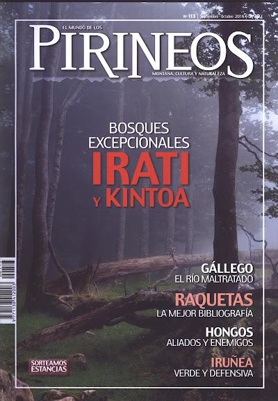 Pirineos113.jpg