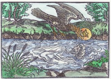 Woodcut 21 From The Prognostications Of Paracelsus, Emblems Related To Alchemy