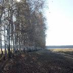 Озеро Круглое Подгоренский район 018.jpg