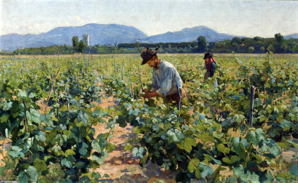 Elin Danielson-Gambogi - In the Vineyard