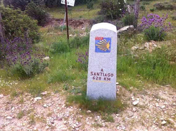 Ruta de Madrid a Segovia por el Camino de Santiago. Sábado 28 de junio 2014