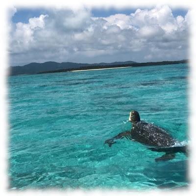 海イメージ画像fuz500×499.jpg