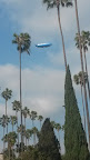 DirecTV #blimp seen from Hollywood Forever Cemetery. Not as exciting as a Goodyear or Conan blimp, but fun nonetheless.