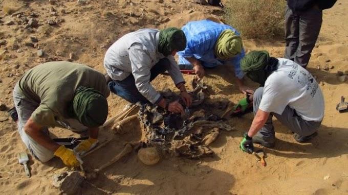 Los doce cargos militares y policiales procesados por genocidio de los que Marruecos no habla.