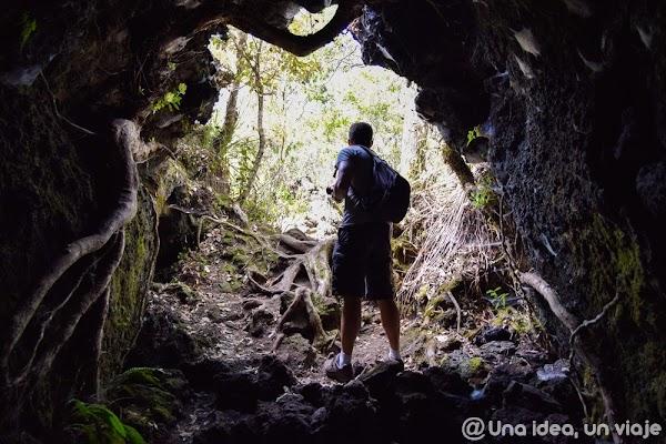 que-ver-hacer-Auckland-imprescindible-unaideaunviaje.com-004.jpg
