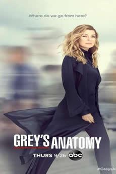 Baixar Série Greys Anatomy 16ª Temporada Torrent Grátis