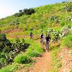 santiago-oaks-IMG_0443.jpg