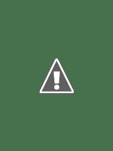 http://www.the-golden-spoons.com